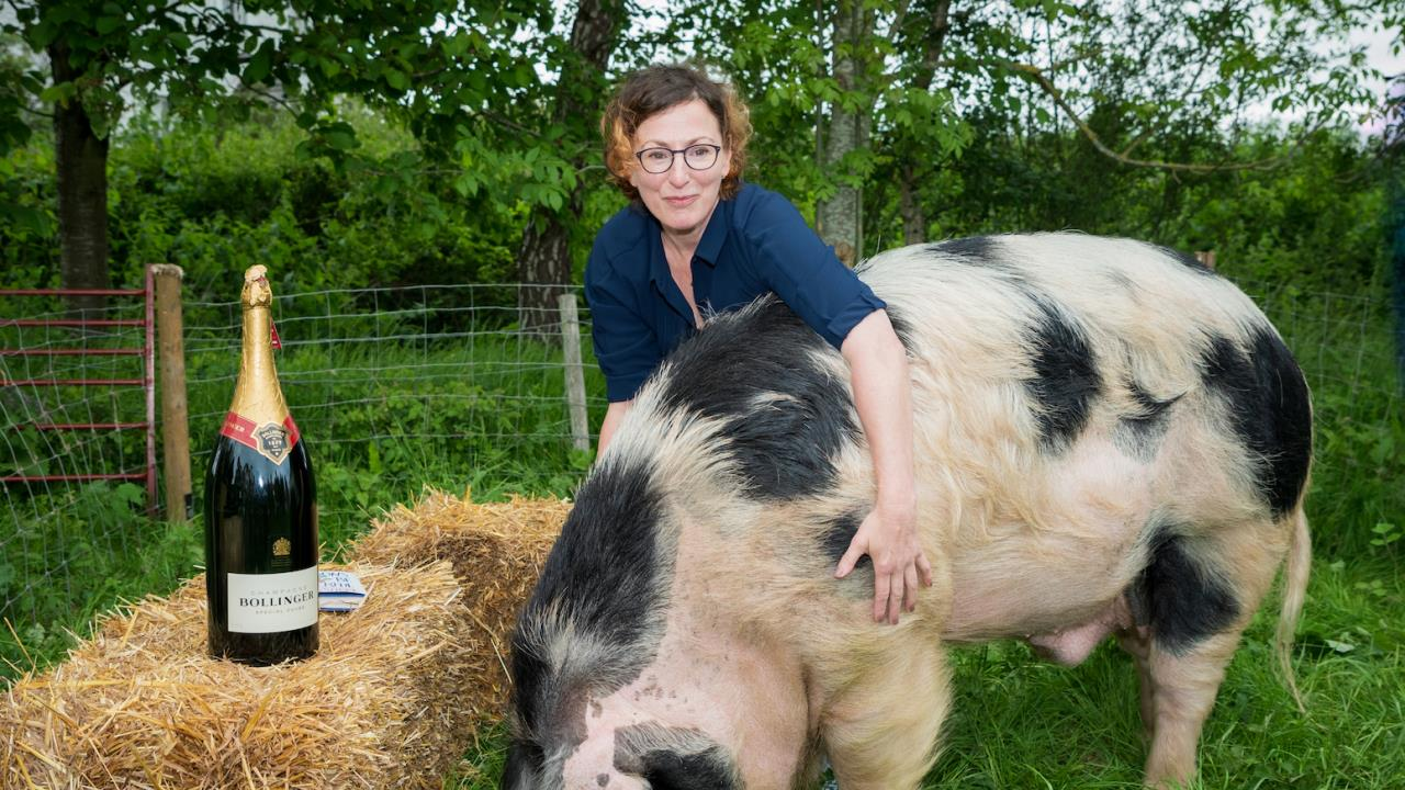 Winner Stibbe meets her Cheerful piggy