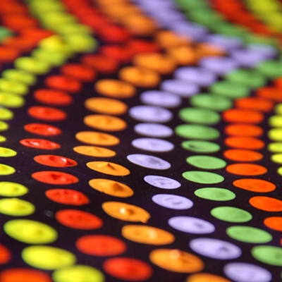 Launch of Kells Type Trail