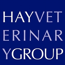 Hay Veterinary Group