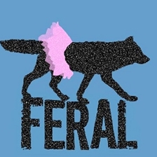 Feral Productions